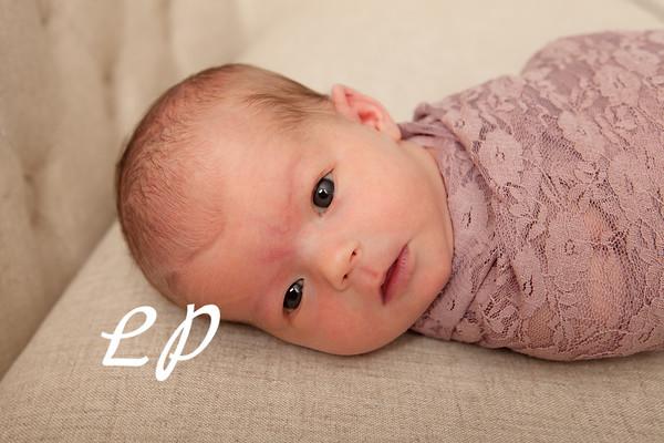 Olivia Newborn (3)