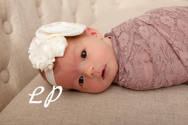 Olivia Newborn (4)