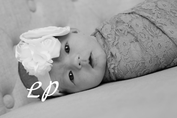 Olivia Newborn (5)