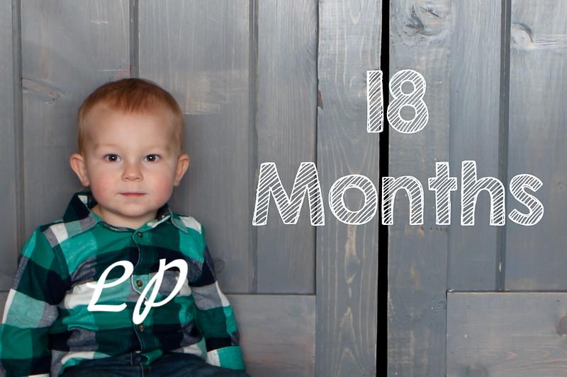 Warren 18 months (9 of 23)1