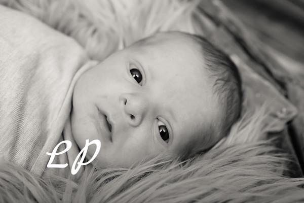 Eli Newborn (14 of 31)