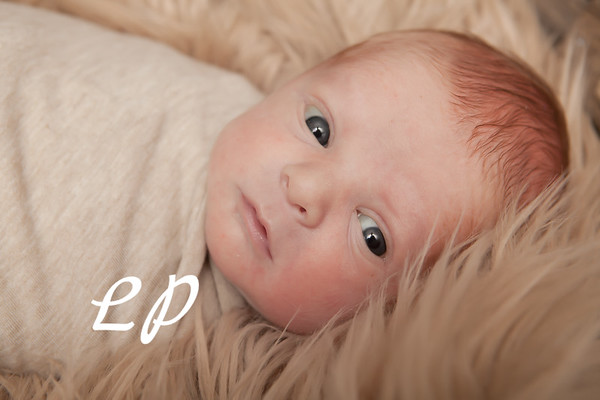 Eli Newborn (13 of 31)