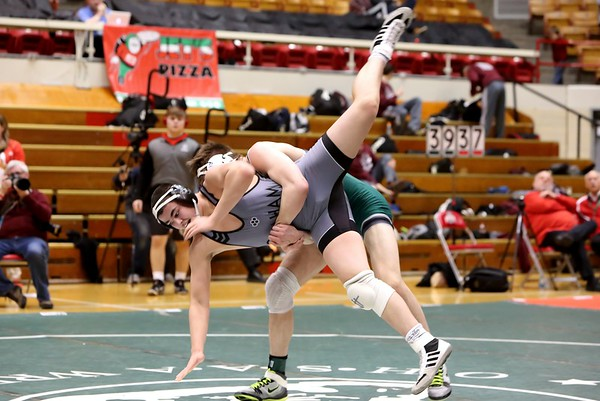 20190210-3 State Wrestling Team Dual Final - Graham v Aurora