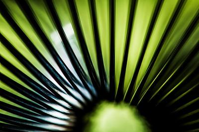 Go Slinky Go
