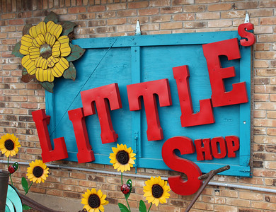 Little's Shop in the City RC, April 13, 2018