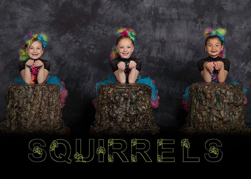 189_5R_squirrels