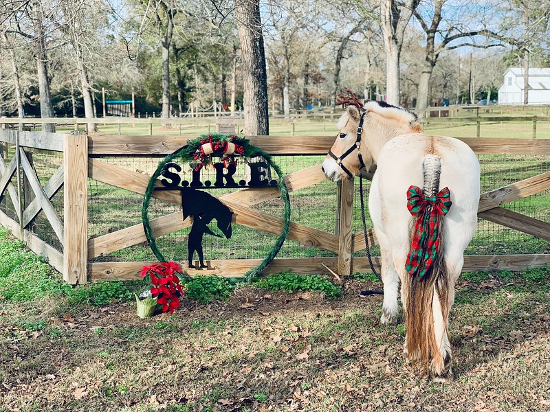 SIRE Entrance Holiday photo