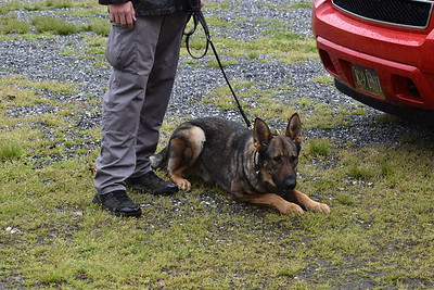 K-9 Conf 2018_Cherokee_IMG_0110-2 (1291)