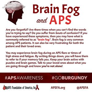 Brain Fog and APS