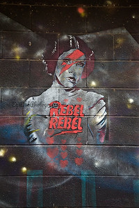 Princess Rebel