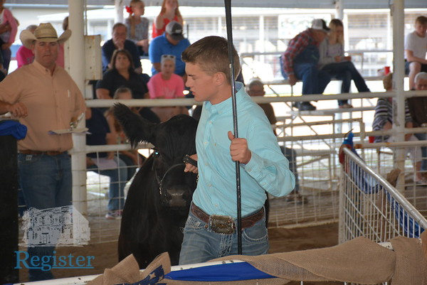 2018 Allen County Fair 4-H/FFA Livestock Premium Auction