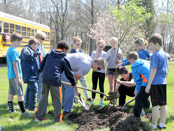 Altamont students work to plant a tree in Union Cemetery on Friday as part of the Arbor Day event under the guidance of Carole Tillman, floating officer of the Altamont Garden Club. Graham Milldrum photo