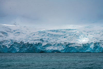 Glacier near Point Wild, Elephant Island