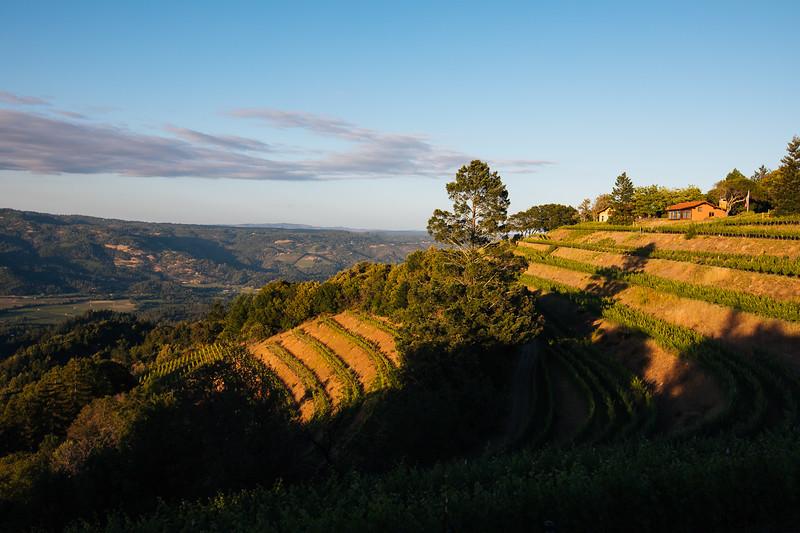 View from Spring Mountain - Barnett Vineyards Vintner Hosted Dinner
