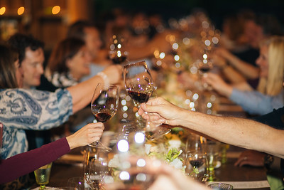A toast at Baldacci Family Vineyards and William Cole Vineyards Vintner Hosted Dinner