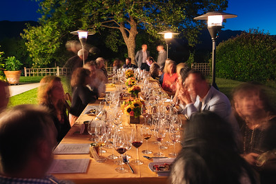 Honig Vineyard and Winery Auction Party