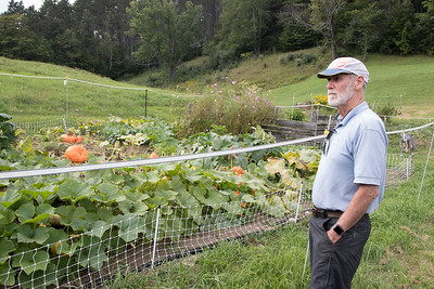 10-Brooke_Beaird_looking_over_the_bounty_in_the_community_garden_maintained_by_Sustainable_Woodstock