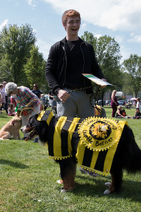 16-Cyrus_the_Bumble_Berner_after_winning_Best_in_Show