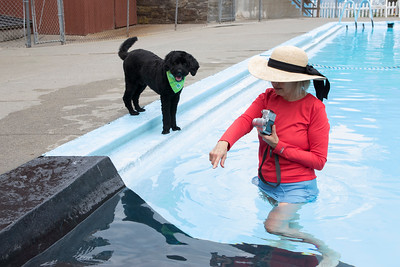 29-Dianne_Russell_coaxes_Hudson_to_get_into_the_pool