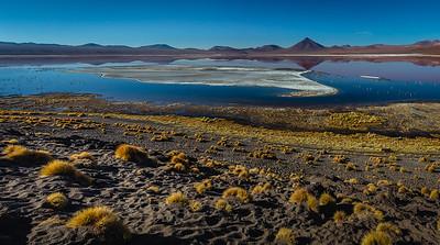 BOLIVIA, SILOLI  - LAGUNA COLORADA-7650