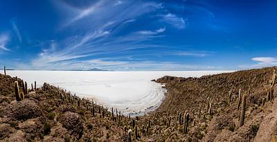 BOLIVIA, SALAR DE UYUNI - ISLA INCAHUASI-7272