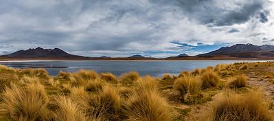 BOLIVIA, ALTIPLANO - LAGUNA CANAPA-7555
