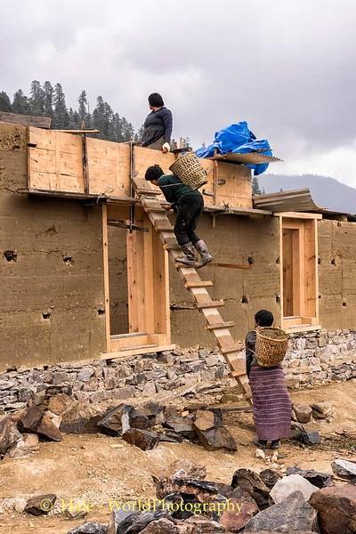 Women Constructing Home