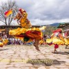 Airborne Cham Dancer