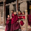 A Gathering of Young Monks