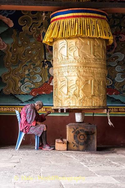 Elderly Man Praying At Punakha Dzong