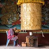 Elderly Man Praying At Punakha Dzong