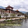 Punakha Dzong Riverside