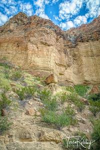 Burro Mesa Pour Off-3376
