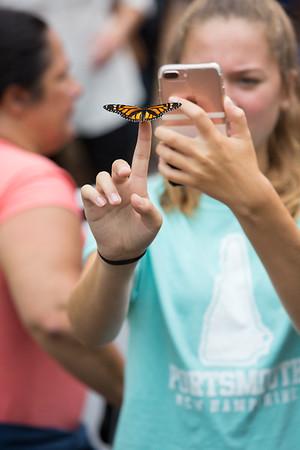 2018 Butterfly 5k