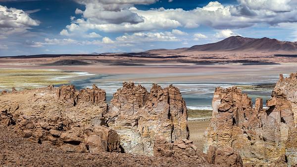 CHILE, ATACAMA - SALAR DE TARA-8120