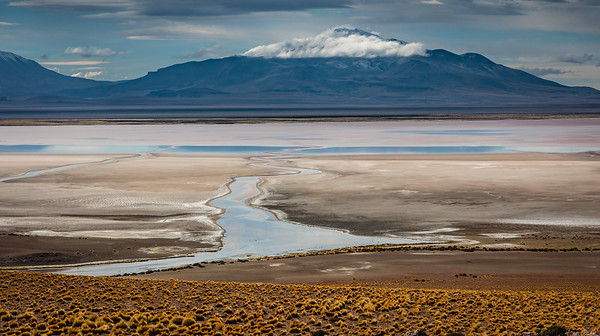 CHILE, ATACAMA - SALAR DE TARA-8047