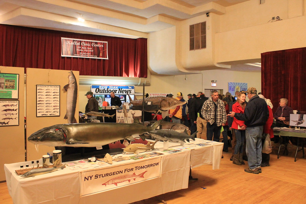 . Charles Pritchard - Oneida Daily Dispatch Attendees at the CNY Sportsman\'s Show look at trophy animals on display on Feb. 3, 2018