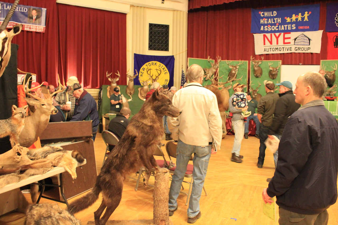 Charles Pritchard - Oneida Daily Dispatch Attendees at the CNY Sportsman's Show look at trophy animals on display on Feb. 3, 2018