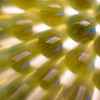 CarolCrosson_LightPainting_Wk11.7