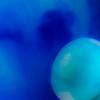 CarolCrosson_Blue_Wk25.74a