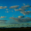 AngeliaPeterson_Sky/Clouds9_wk21