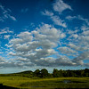 AngeliaPeterson_Sky/Clouds8_wk21