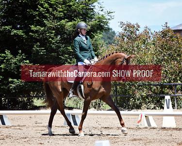 SVE 18 La Stellina 9777