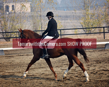 SVE 18 D'Artagnan DG 6282