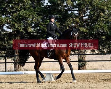 SVE 18 Imperial High Dancer 6048