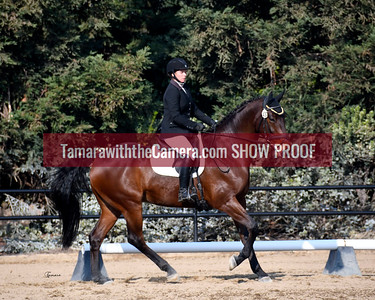 SVE 18 Imperial High Dancer 6049