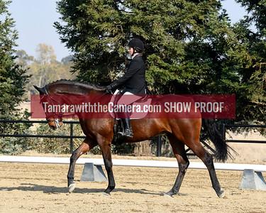 SVE 18 Imperial High Dancer 6042