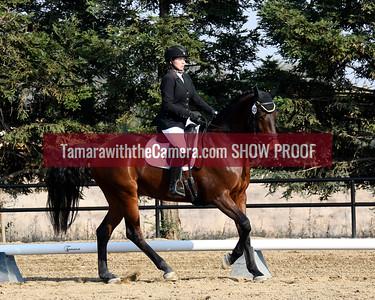 SVE 18 Imperial High Dancer 6047