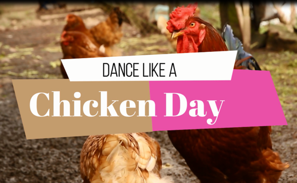 2018 Dance Like a Chicken Day
