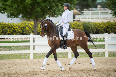 2018 Dressage in the Rockies-Coming Soon